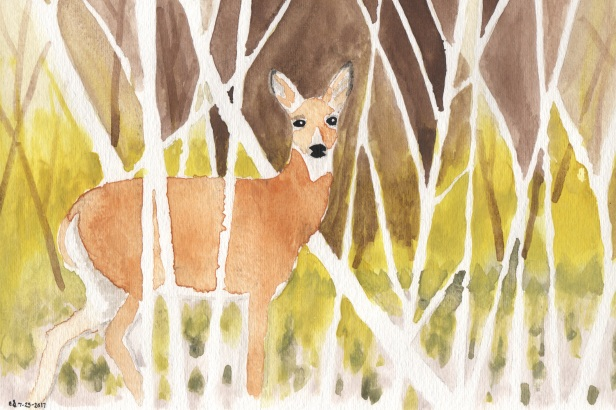 watercolor - white tailed deer - 2017 3x2
