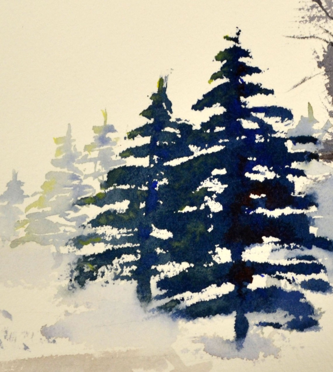 drawn-fir-tree-spruce-tree-9