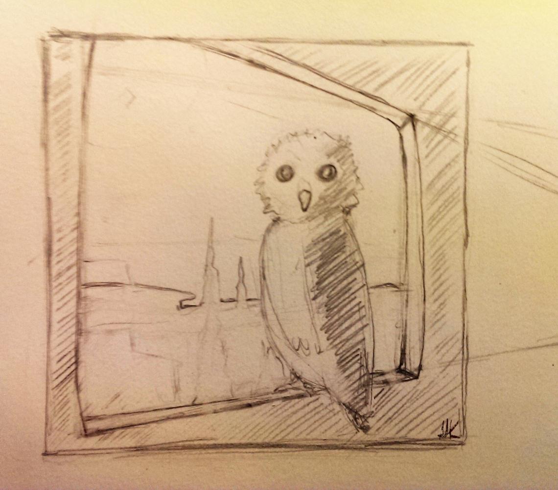 Owl by the window. Aak sketch